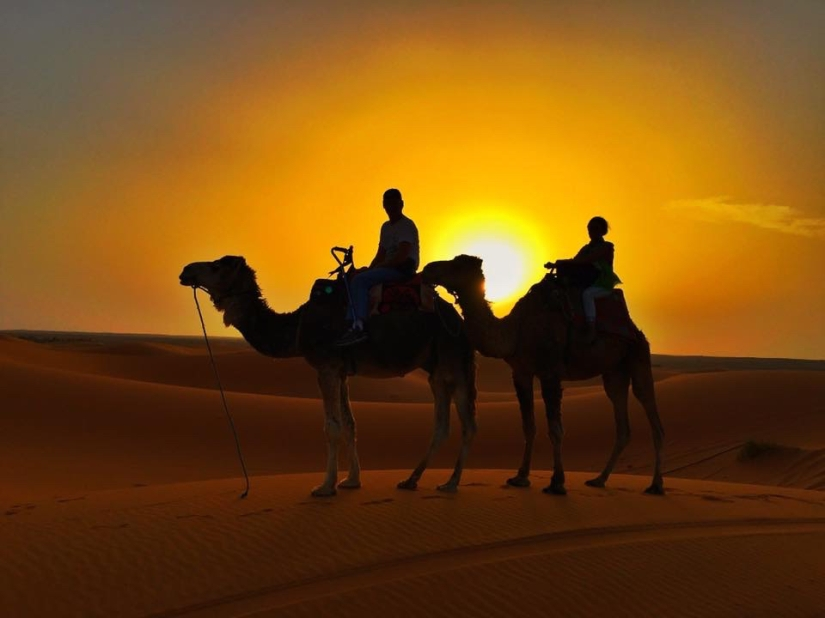 MAJESTIC SAHARA SANDDUNES