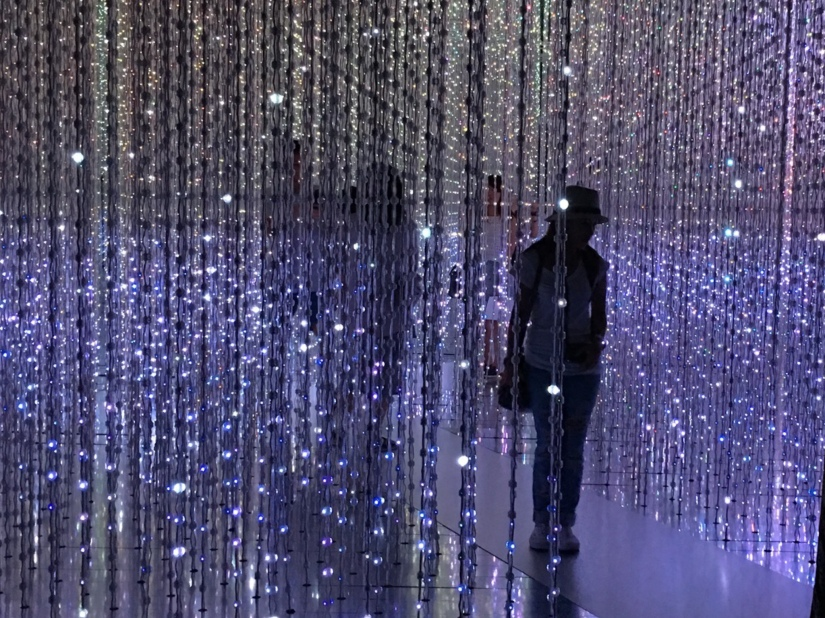 IMMERSED IN A WORLD OF ART, SCIENCE, MAGIC AND METAPHOR AT FUTURE WORLD ARTSCIENCEMUSEUM