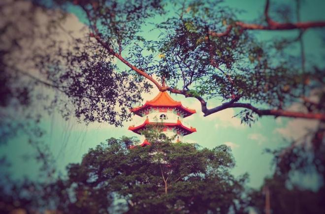 chinese garden.jpg