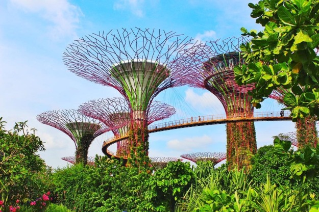 img_5124 PLACES TO INCLUDE IN YOUR SINGAPORE ITINERARY IN 2018 Travel